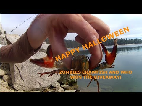 Zombie Fish Are In The Water At Huntington Lake CA Plus Contest Winner