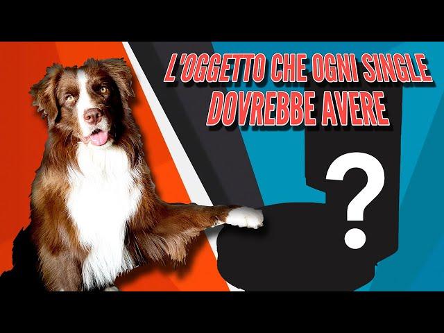 L'OGGETTO CHE OGNI SINGLE DOVREBBE AVERE...