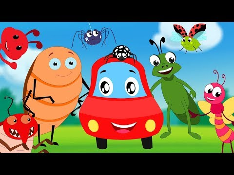 Bugs Song | Little Red Car | Nursery Rhymes & Cartoon Videos - Kids Channel