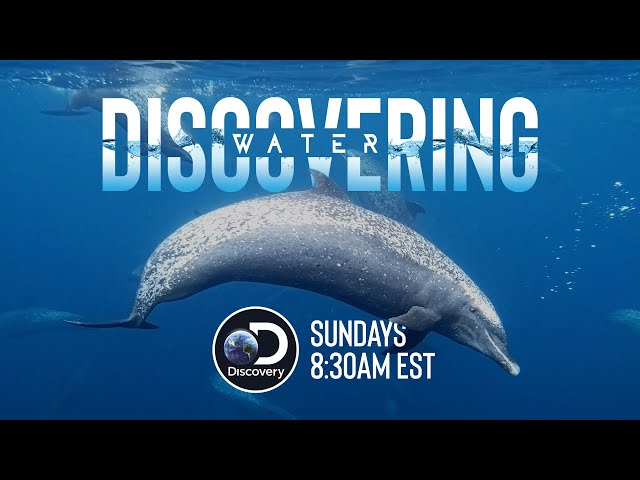 2018 Discovering Water TV show open airing on Discovery Channel