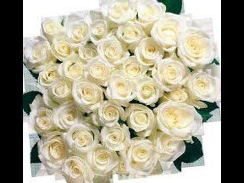 Флористика!КАК продлить ЖИЗНЬ РОЗАМ? Уход за РОЗОЙ!🔸How to prolong the life of roses? ☼ksu66a