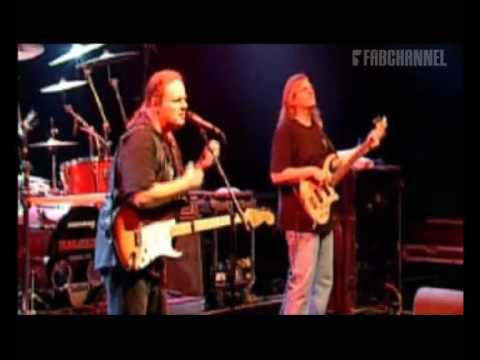 Walter Trout Band (Live at Paradiso): The love we once knew