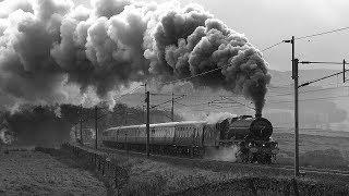 LMS Steam On Shap