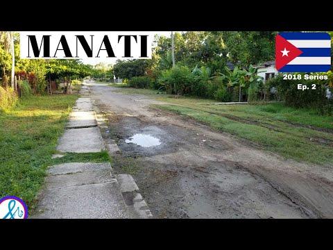 Video de Manatí
