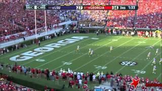 Odell Beckham JR (WR LSU) vs Georgia 2013