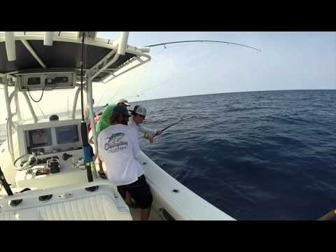 Venice Tuna Fishing Charters