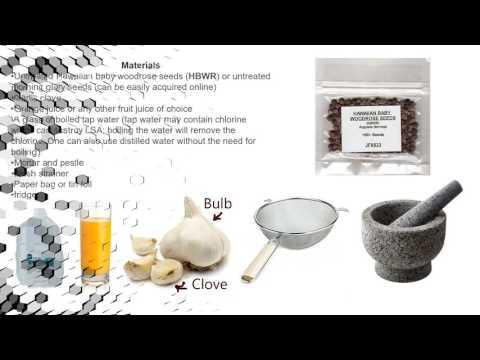 Simple Nausea Free LSA extraction