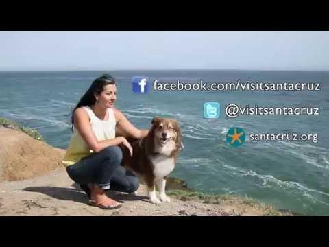 Pet Friendly Santa Cruz County
