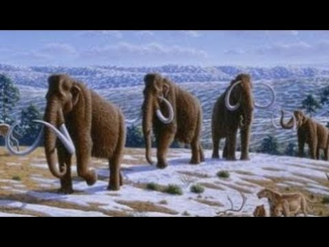 National Geographic   Earth History in 1000 Years - Top Documentary Films The Documentary 2017