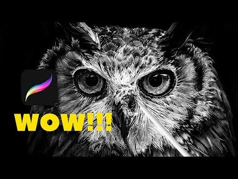 Apple Pencil / DRAWING REALISTIC OWL!! (Time lapse ) 🦉 GUFO REALISTICO / PROCREATE