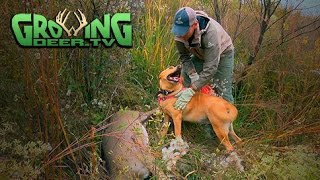 Bow Hunting 2015: A Cold Front Brings On Doe Fever! 2 Doe Kills!