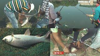NonStop Fishing (Part-2) । অবিরাম মাছ ধরা পর্ব-2