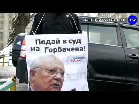 Дарья Дедова подает заявление о возбуждении уголовного дела против Горбачева