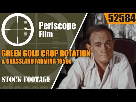 GREEN GOLD  CROP ROTATION & GRASSLAND FARMING 1950s FILM 52584
