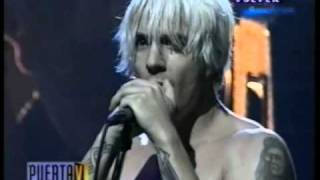 Baixar - Red Hot Chili Peppers I Could Have Lied Live In Argentina 1999 Grátis