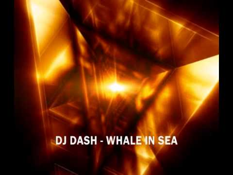 DJ DASH -  WHALE IN SEA