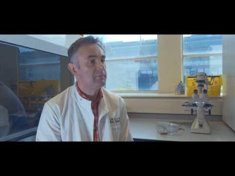 Cardiff University School of Medicine - Public Involvement in Research