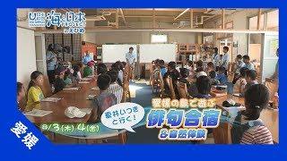 上島町、岩城島で行われた2017年海と日本プロジェクトinえひめのオリジ...