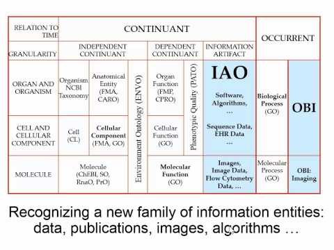 Introduction to Basic Formal Ontology (2015): Part One