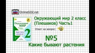 Задание 5 Какие бывают растения - Окружающий мир 2 класс (Плешаков А.А.) 1 часть