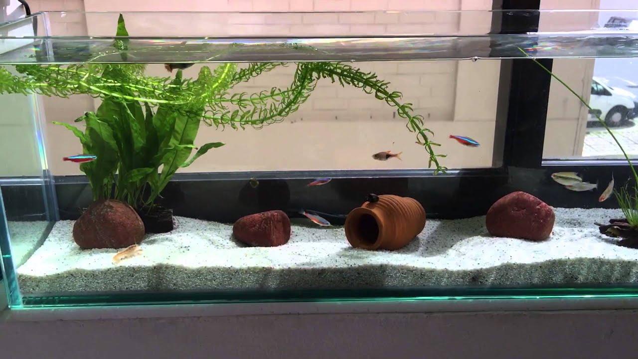 Крышка для аквариума своими руками фото