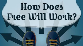 How Does Free Will Work?