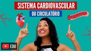 Cardiovascular circulatório
