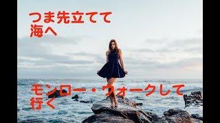 南佳孝 6th single (1979年4月 CBSソニー) 南佳孝/モンロー・ウォークM...