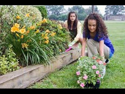 Como hacer un jardin exterior youtube - Hacer un jardin ...