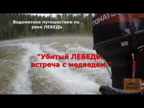 Убитый ЛЕБЕДЬ, встреча с МЕДВЕДЯМИ/Выдра 480 jet + Тохатсу 50 водомет.