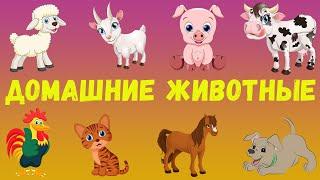 Животные, Развивающий мультик про животных, Домашние животные, Обучающее видео для детей [HD]