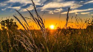 VENIREA LUI ISUS: Semnele vremurilor, cu Willem J. J. Glashouwer  Episodul 31 52