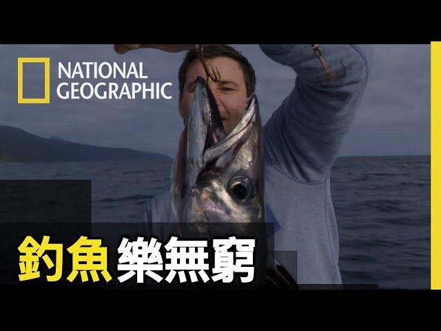 金梭魚釣起來後要特別當心牠們的牙齒,看看照片中牠們的大尖牙!!【釣魚樂無窮】短片精華版