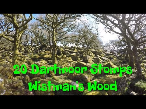 Dartmoor Stomps S02E03 Wistmans Wood