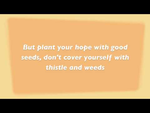 Mumford and Sons - Thistle and weeds