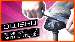 Removal instructions: Glushu