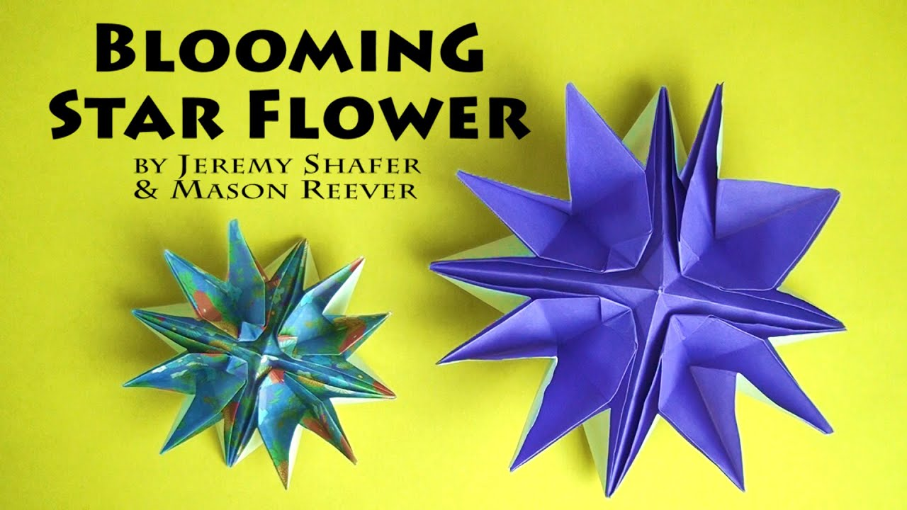 Blooming Star Flower - YouTube
