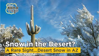 Desert Snow in Arizona - It's rare to see snow in the Desert