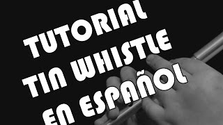 Tin Whistle Tutorial en Español - Digitacion