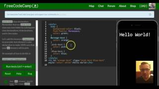 Override All Other Styles by using Important, freeCodeCamp review html & css, lesson 51