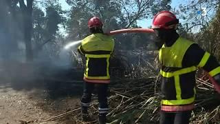 Incendie à Argelès-sur-Mer : des milliers de campeurs évacués