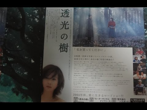 透光の樹 (2004) 映画チラシ 秋吉久美子 永島敏行 1日10万回再生