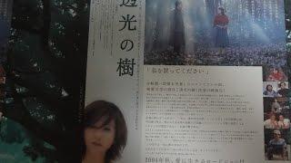 透光の樹 2004 映画チラシ 2004年10月30日公開 【映画鑑賞&グッズ探求...