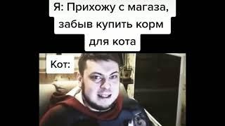 озон подборка лучших мемов из тик ток №1