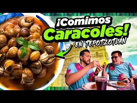 Deliciosos y Exóticos CARACOLES en TEPOTZOTLÁN.