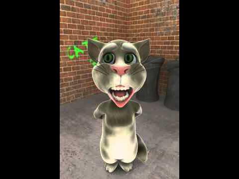 Sapito estilo gatito tom