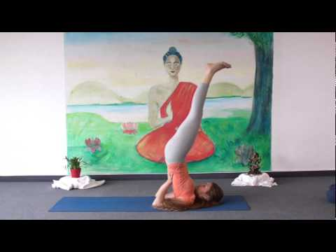 yoga for complete beginners  yoga class 20 minutes  doovi
