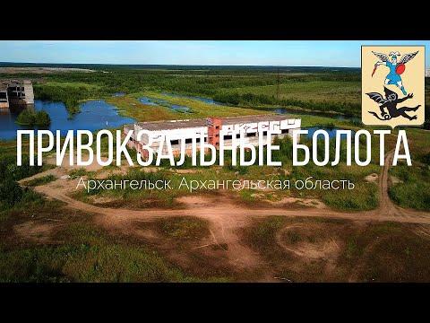 4K. Привокзальные болота. Архангельск. Архангельская область.
