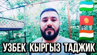 Узбек Кыргыз Таджик Мусулмонлар ёрдаминглар керак,