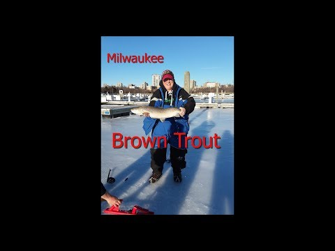 Milwaukee Brown Trout... On The ICE! Fish ON